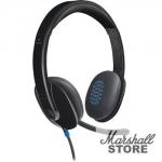 Гарнитура Logitech USB Headset H540 (981-000480)