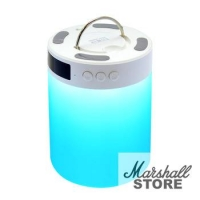 Портативная акустика Ginzzu GM-893W 5W, Bluetooth,Handsfree, microSD, FM, RGB LED-лампа, будильник, белый