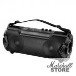 Портативная акустика Ginzzu GM-985B, 2х11W,2.0Ah,EQ,USB,TF,AUX,FM